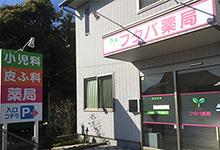 フタバ薬局 わらび店